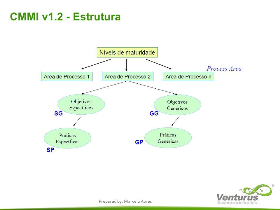 CMMI v1.2 - Estrutura
