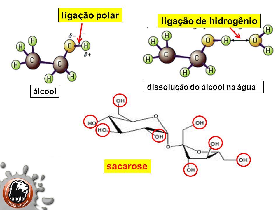 ligação polar ligação de hidrogênio sacarose