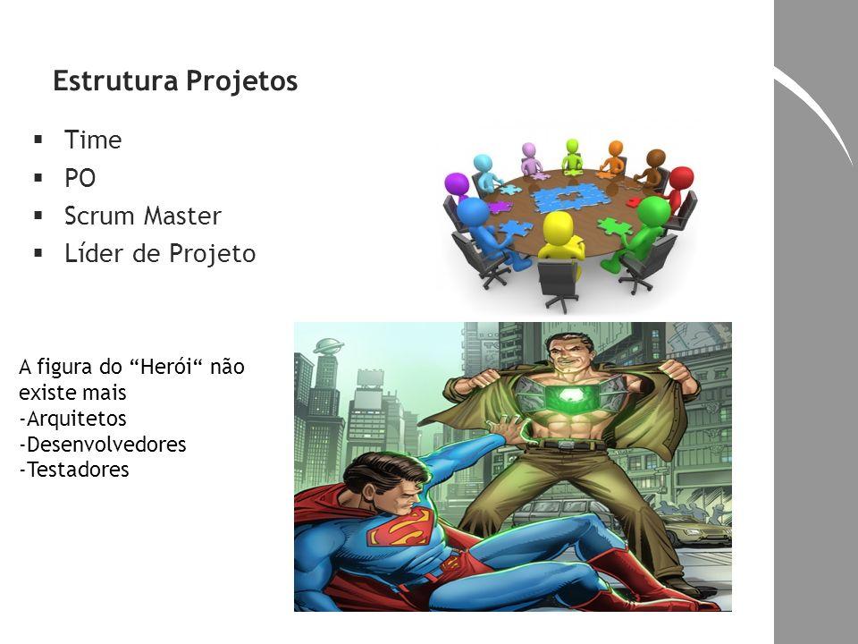 Estrutura Projetos Time PO Scrum Master Líder de Projeto