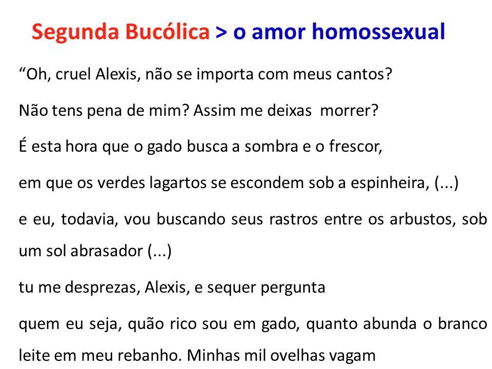 Segunda Bucólica > o amor homossexual