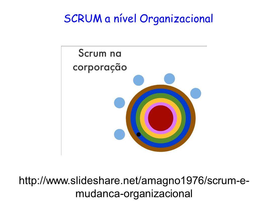 SCRUM a nível Organizacional