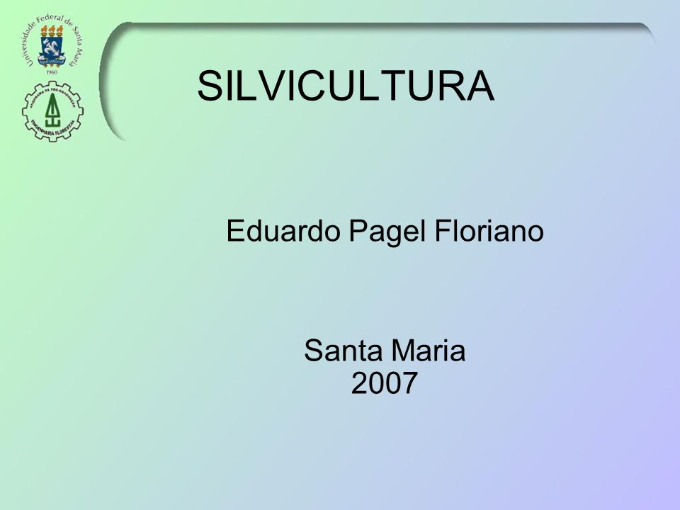 Eduardo Pagel Floriano Santa Maria 2007