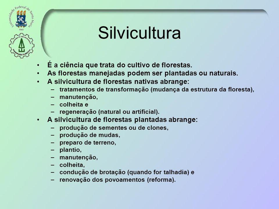 Silvicultura É a ciência que trata do cultivo de florestas.