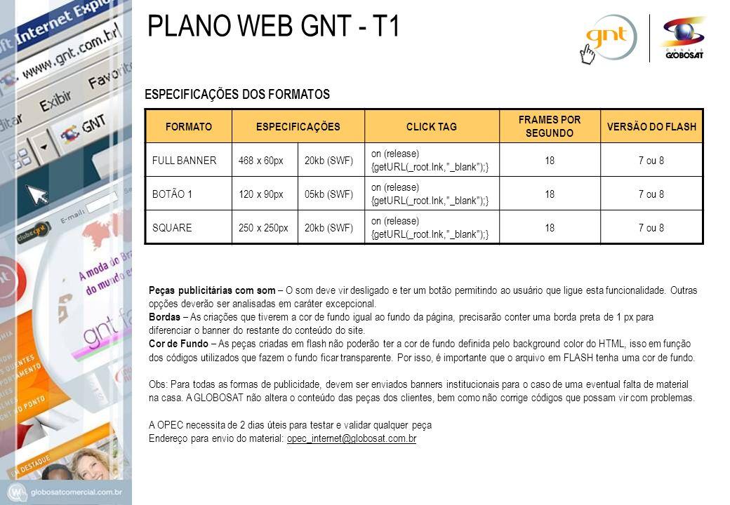 PLANO WEB GNT - T1 ESPECIFICAÇÕES DOS FORMATOS FORMATO ESPECIFICAÇÕES