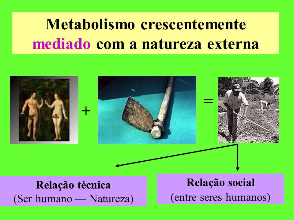 Metabolismo crescentemente mediado com a natureza externa