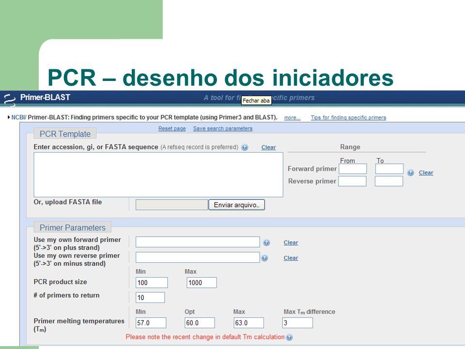 PCR – desenho dos iniciadores