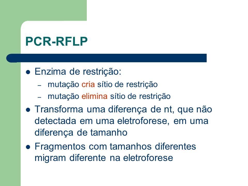 PCR-RFLP Enzima de restrição: