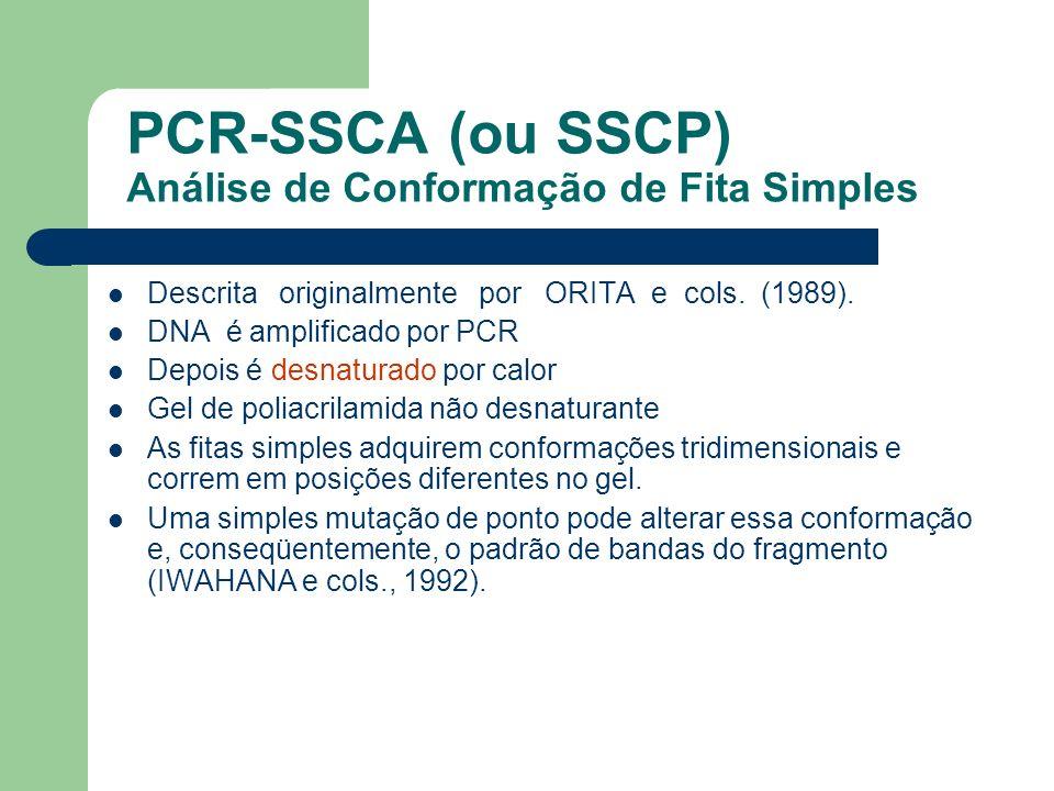 PCR-SSCA (ou SSCP) Análise de Conformação de Fita Simples