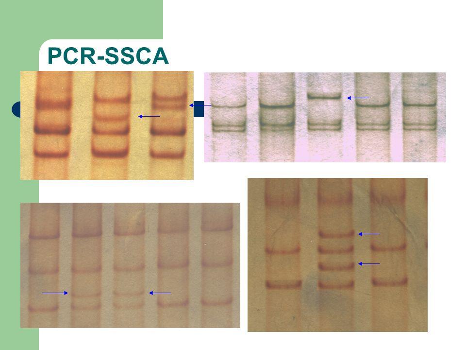 PCR-SSCA