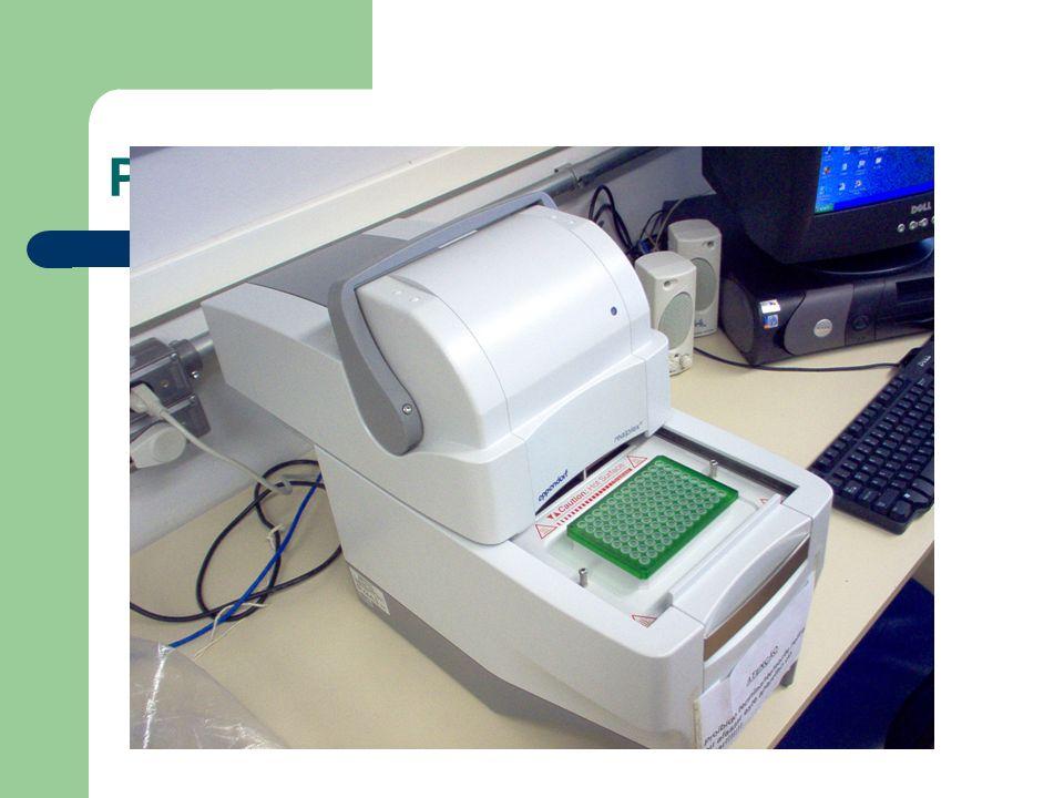 PCR em tempo real