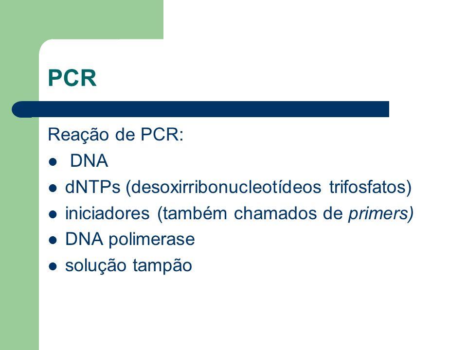 PCR Reação de PCR: DNA dNTPs (desoxirribonucleotídeos trifosfatos)