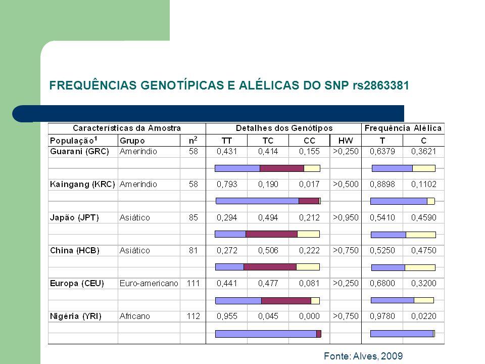 FREQUÊNCIAS GENOTÍPICAS E ALÉLICAS DO SNP rs2863381