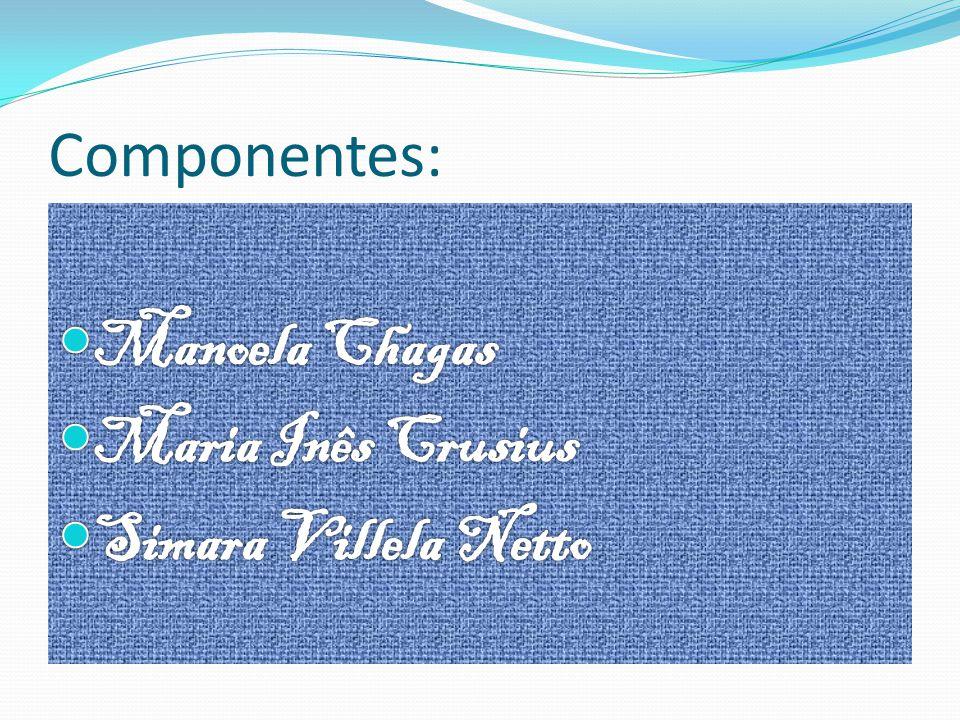 Componentes: Manoela Chagas Maria Inês Crusius Simara Villela Netto