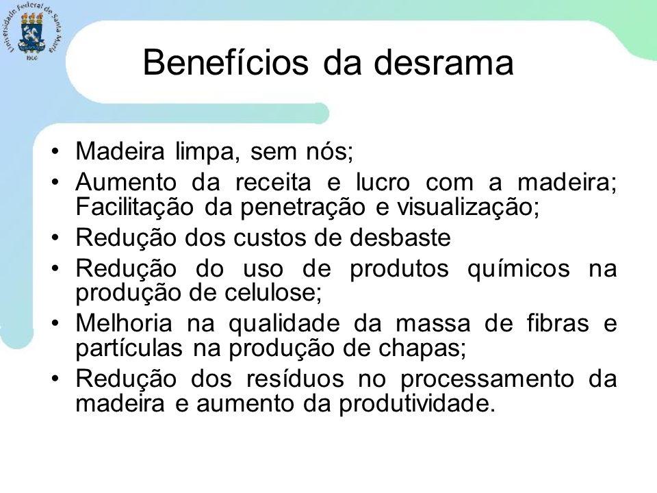 Benefícios da desrama Madeira limpa, sem nós;