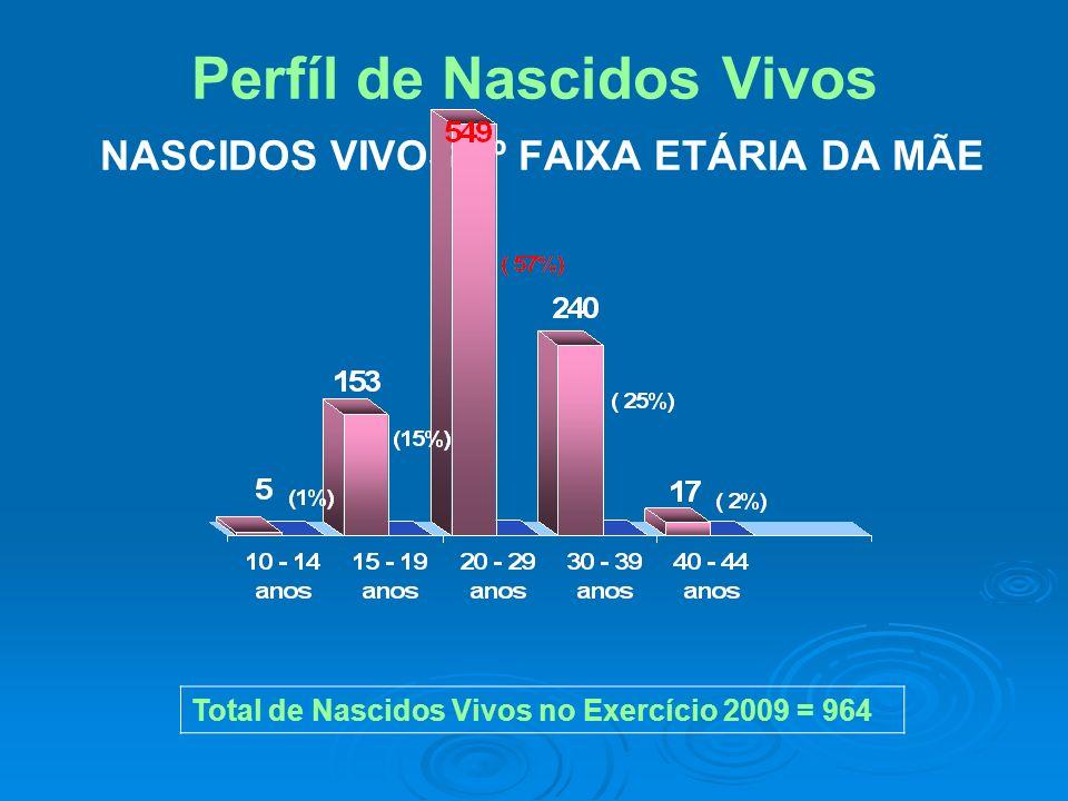 Perfíl de Nascidos Vivos NASCIDOS VIVOS 2º FAIXA ETÁRIA DA MÃE