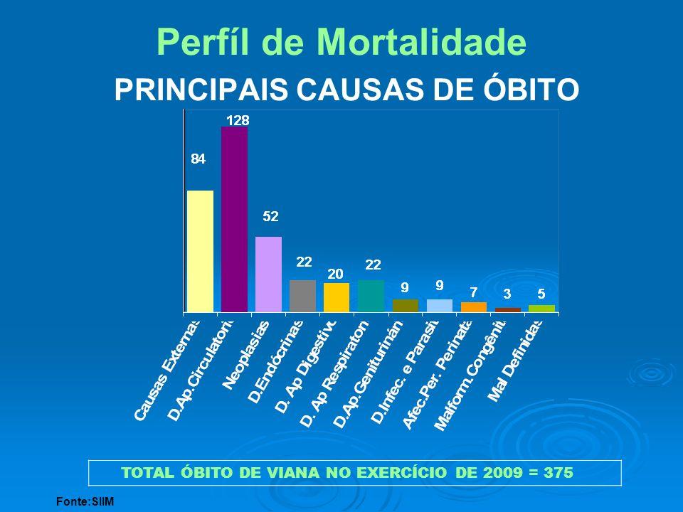 Perfíl de Mortalidade PRINCIPAIS CAUSAS DE ÓBITO