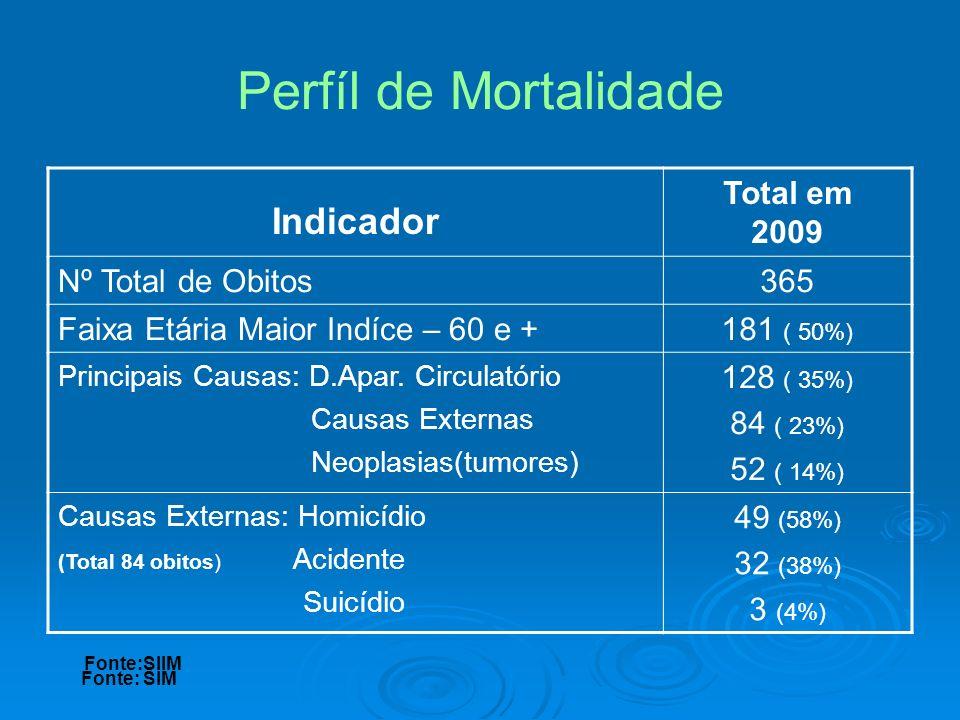 Perfíl de Mortalidade Indicador Total em 2009 Nº Total de Obitos 365