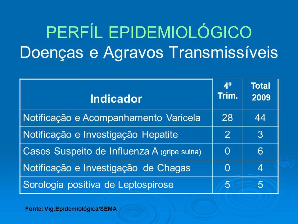 PERFÍL EPIDEMIOLÓGICO Doenças e Agravos Transmissíveis