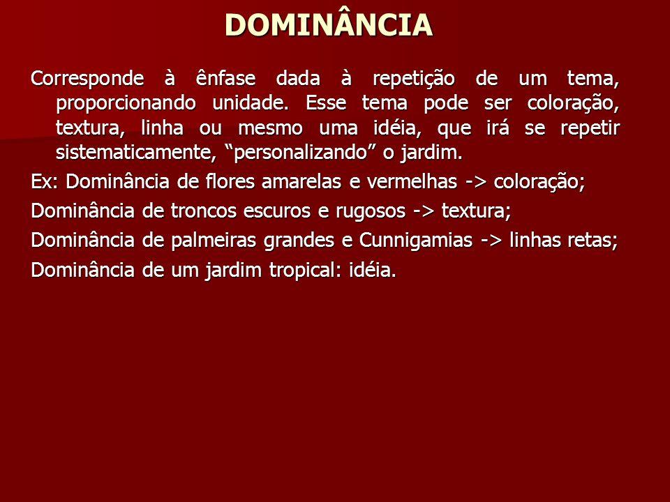 DOMINÂNCIA