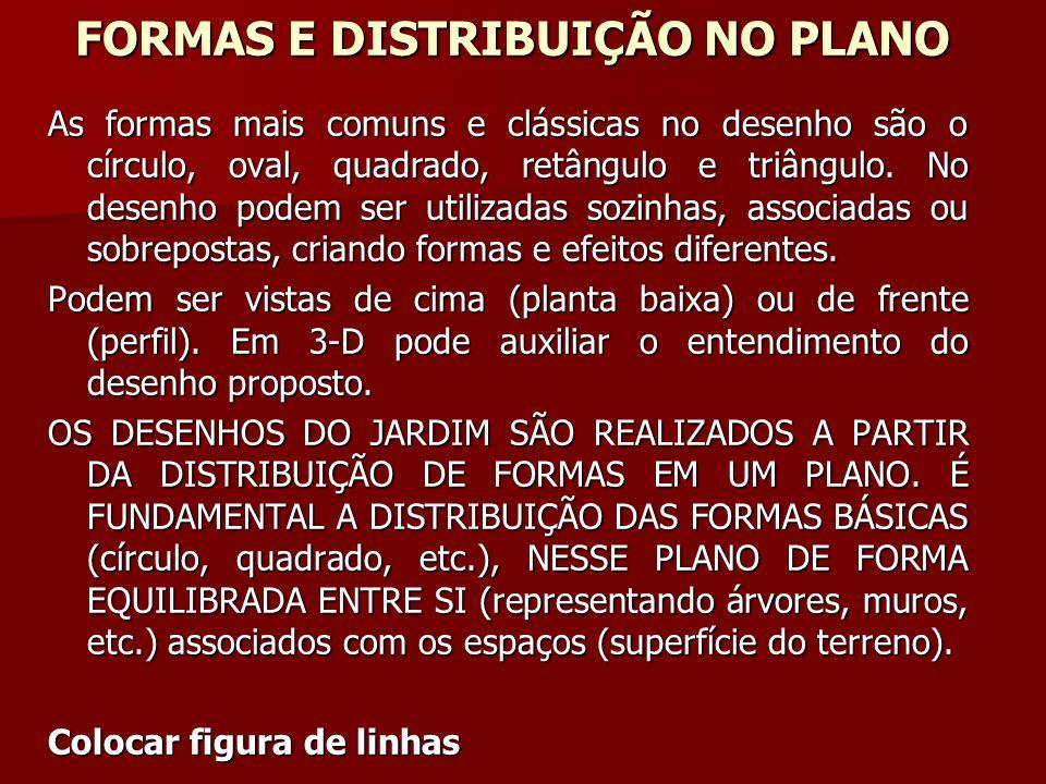 FORMAS E DISTRIBUIÇÃO NO PLANO