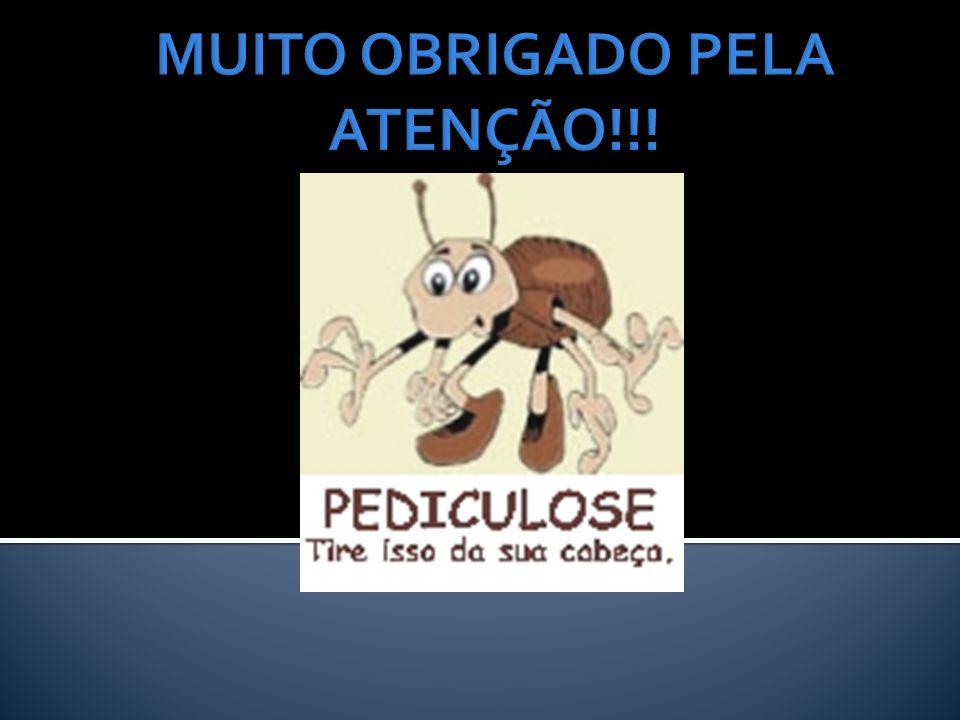 MUITO OBRIGADO PELA ATENÇÃO!!!