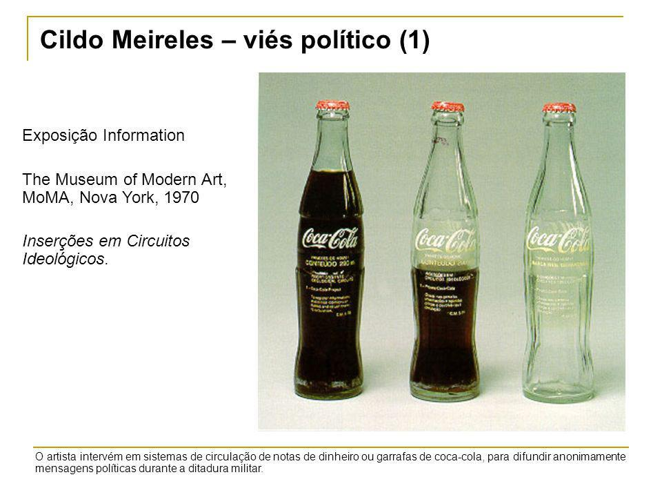 Cildo Meireles – viés político (1)