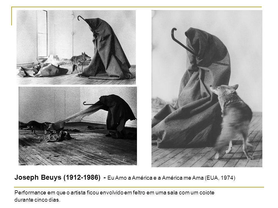 Joseph Beuys (1912-1986) - Eu Amo a América e a América me Ama (EUA, 1974)