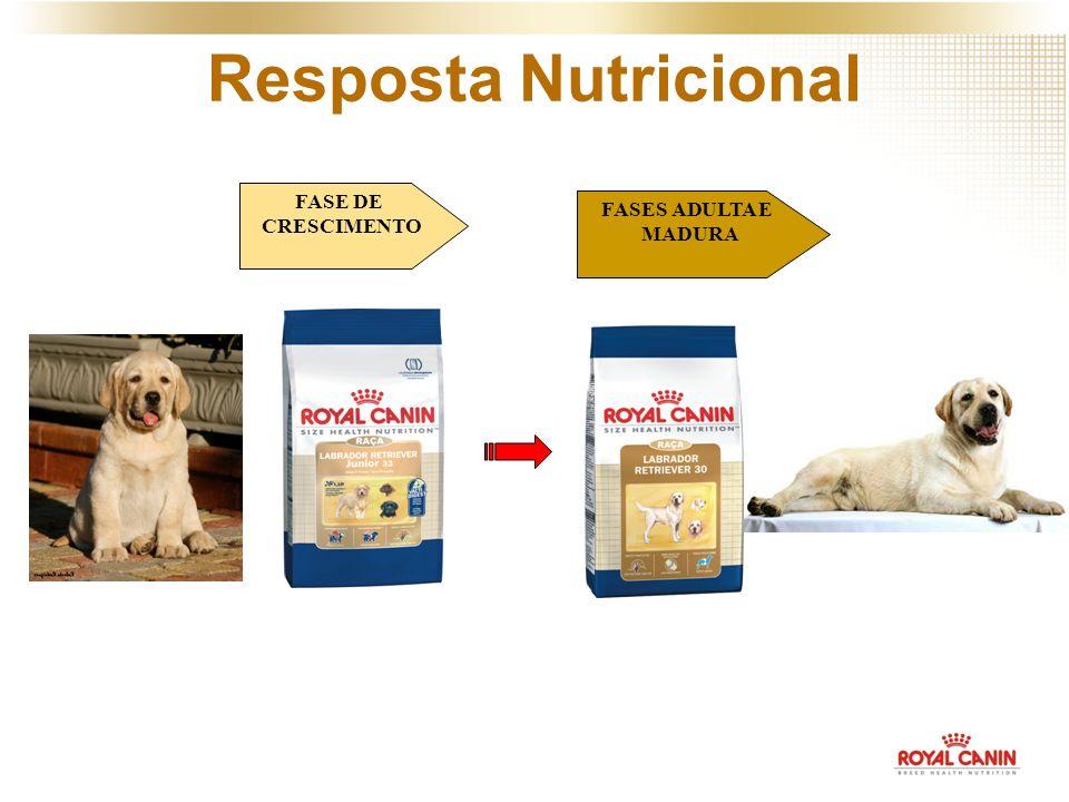 Resposta Nutricional FASE DE CRESCIMENTO FASES ADULTA E MADURA