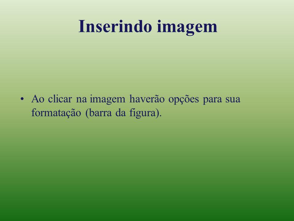 Inserindo imagem Ao clicar na imagem haverão opções para sua formatação (barra da figura).