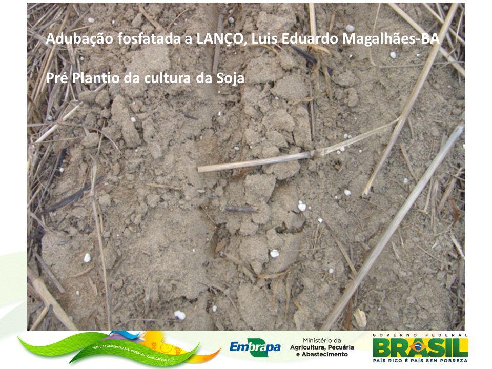 Adubação fosfatada a LANÇO, Luis Eduardo Magalhães-BA