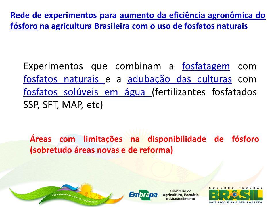 Rede de experimentos para aumento da eficiência agronômica do fósforo na agricultura Brasileira com o uso de fosfatos naturais