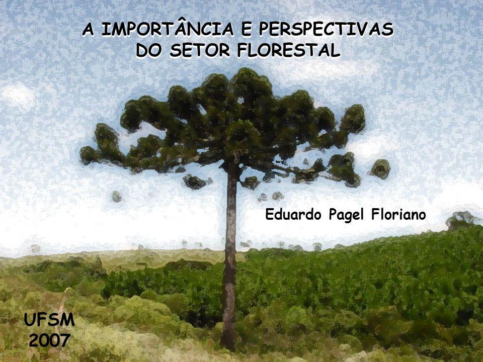 Eduardo Pagel Floriano