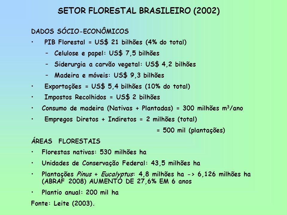 SETOR FLORESTAL BRASILEIRO (2002)