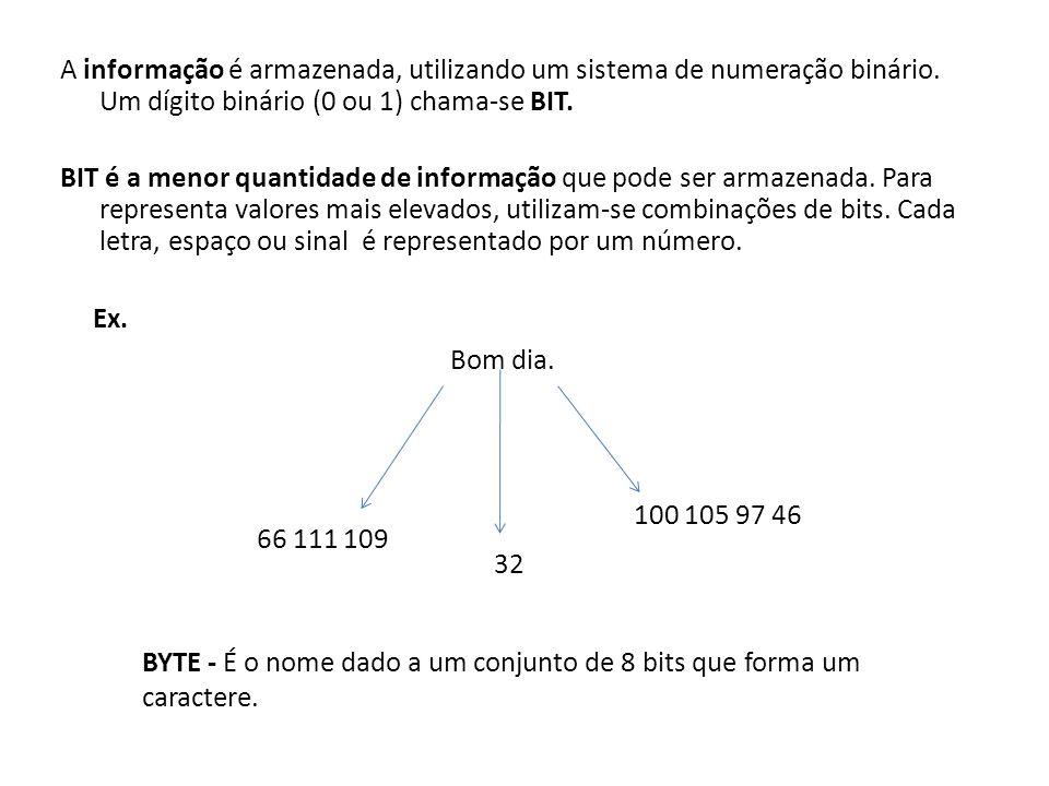 A informação é armazenada, utilizando um sistema de numeração binário