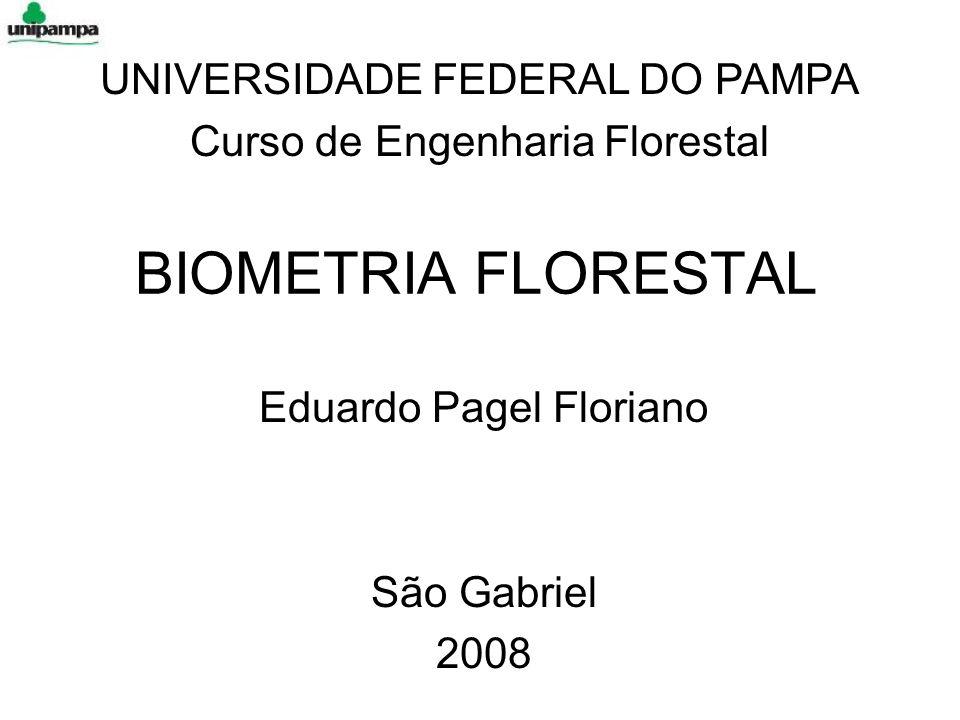 Eduardo Pagel Floriano São Gabriel 2008