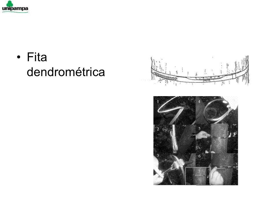 Fita dendrométrica