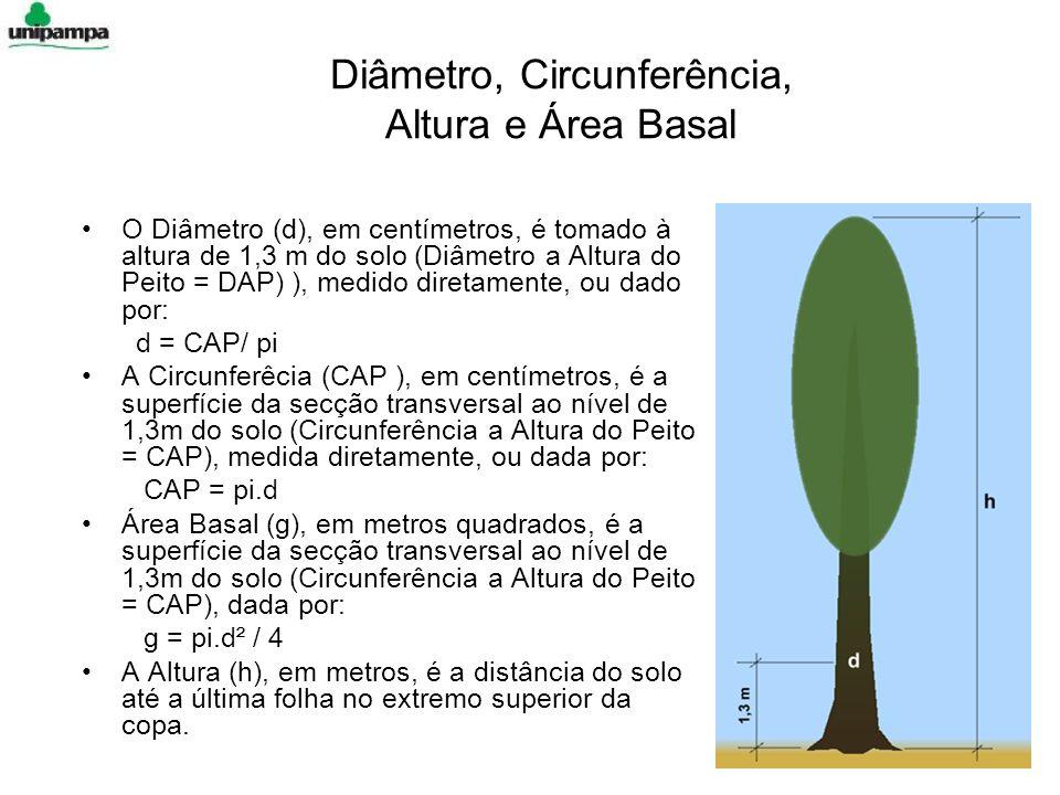 Diâmetro, Circunferência, Altura e Área Basal