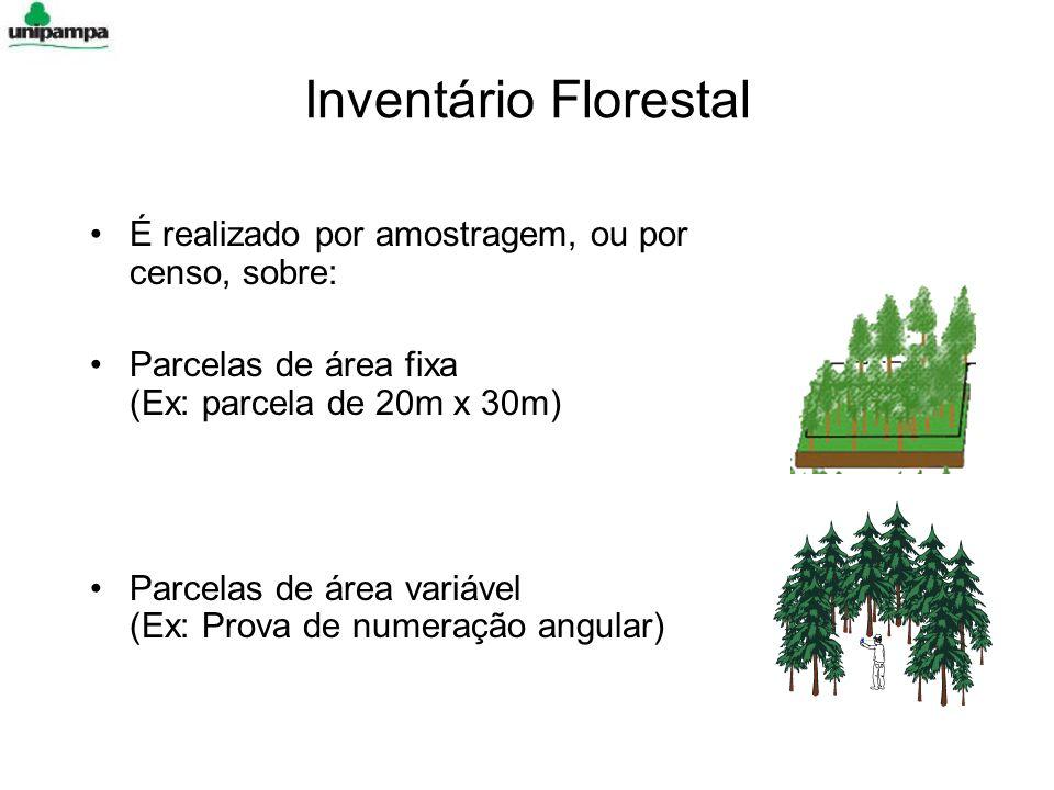 Inventário Florestal É realizado por amostragem, ou por censo, sobre: