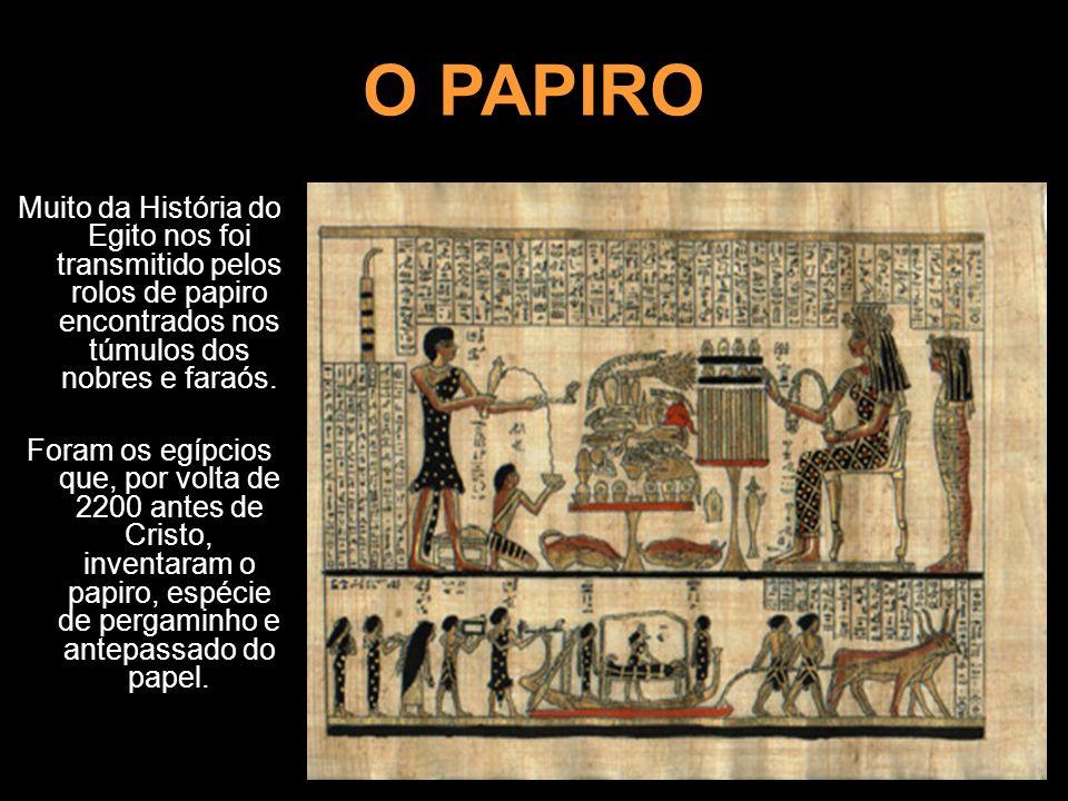 O PAPIROMuito da História do Egito nos foi transmitido pelos rolos de papiro encontrados nos túmulos dos nobres e faraós.