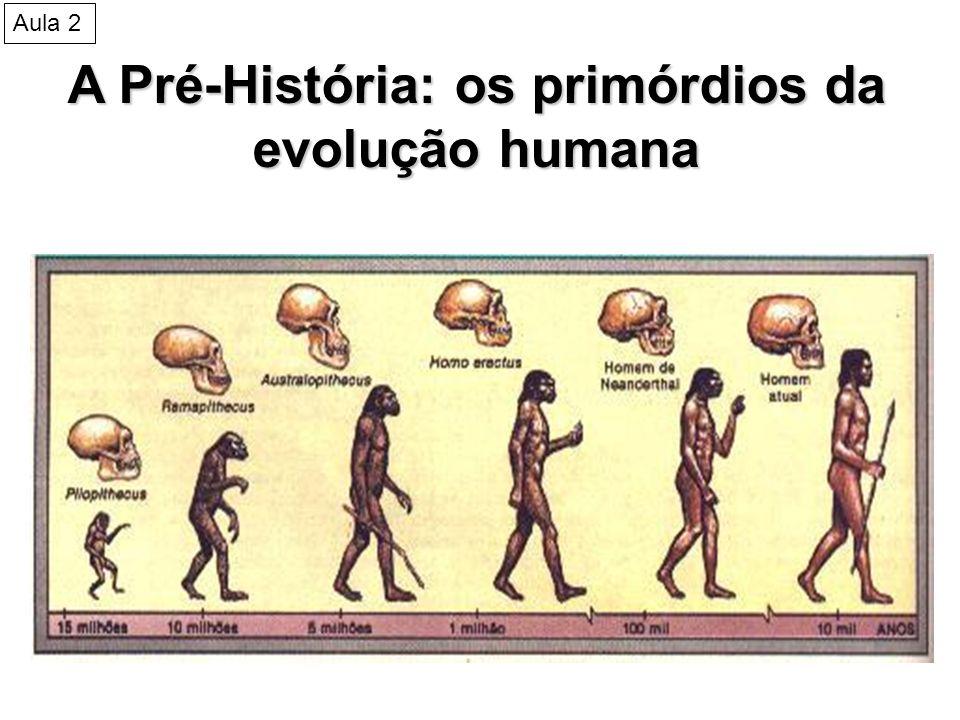 A Pré-História: os primórdios da evolução humana