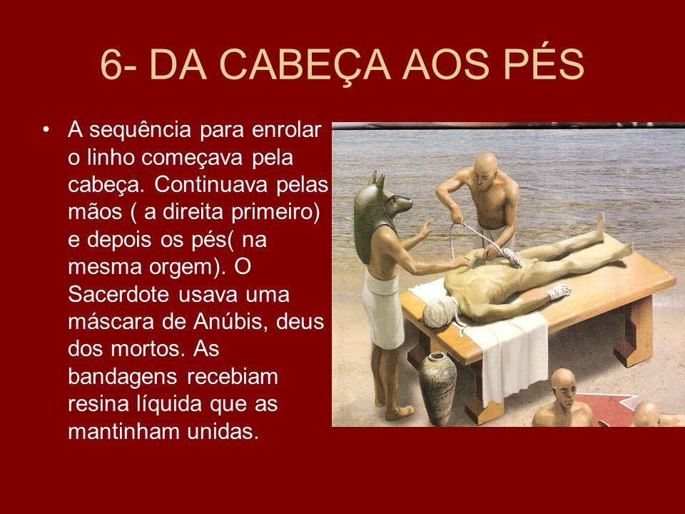 6- DA CABEÇA AOS PÉS