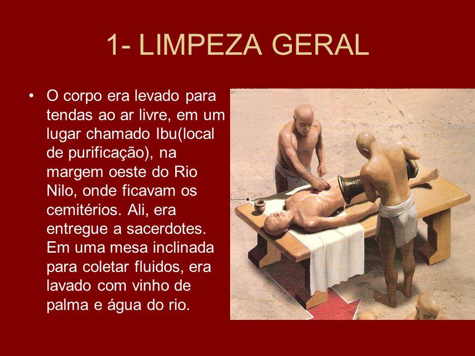 1- LIMPEZA GERAL