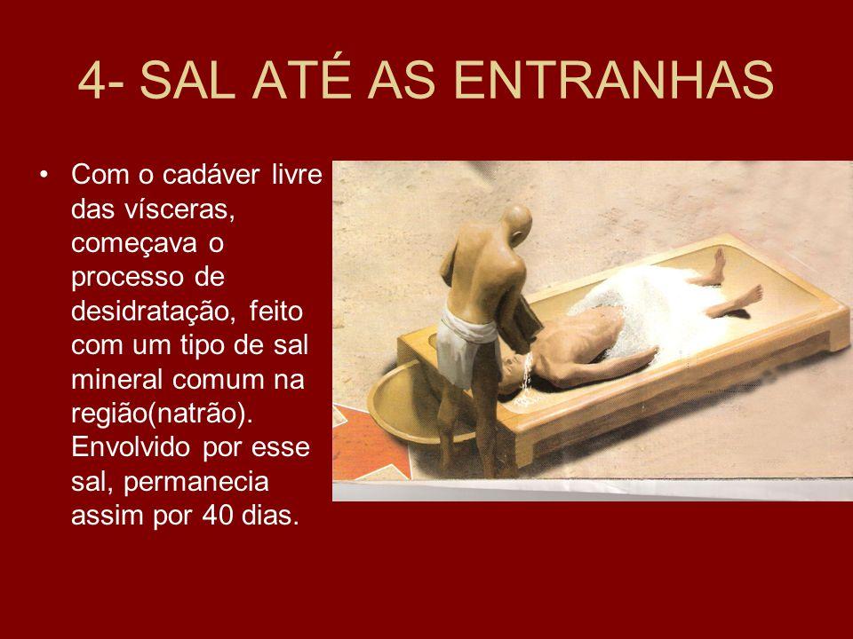 4- SAL ATÉ AS ENTRANHAS