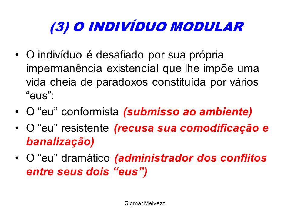 (3) O INDIVÍDUO MODULAR