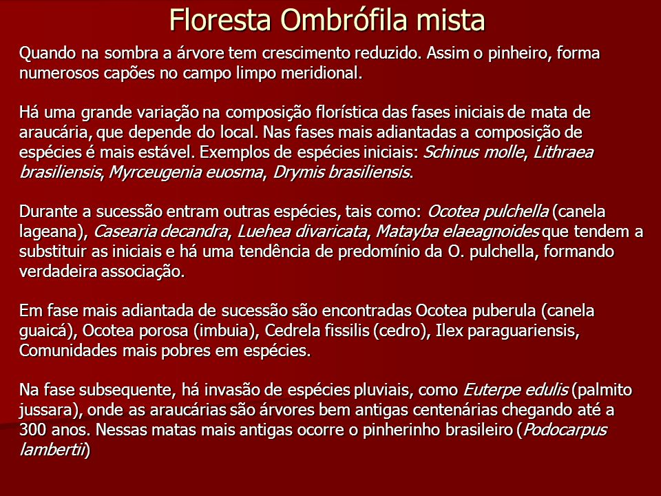 Floresta Ombrófila mista