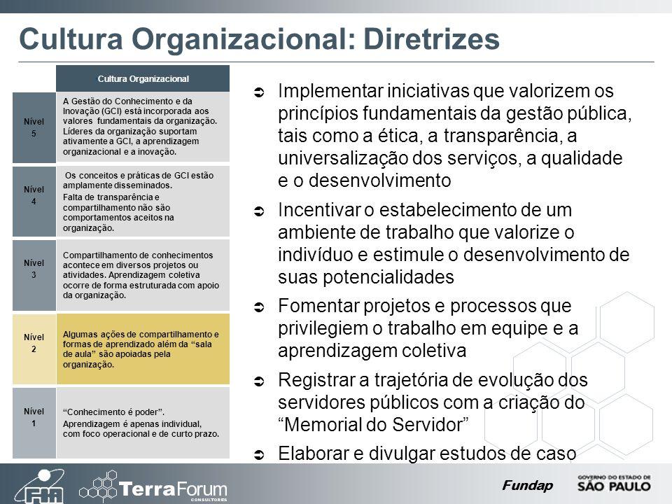 Cultura Organizacional: Diretrizes