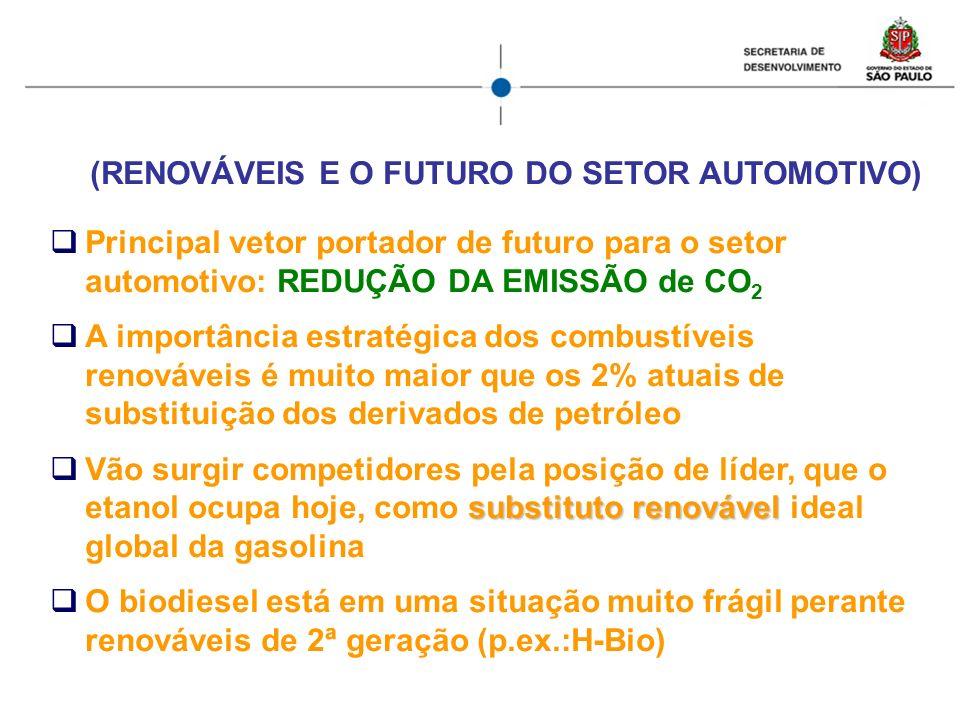 (RENOVÁVEIS E O FUTURO DO SETOR AUTOMOTIVO)