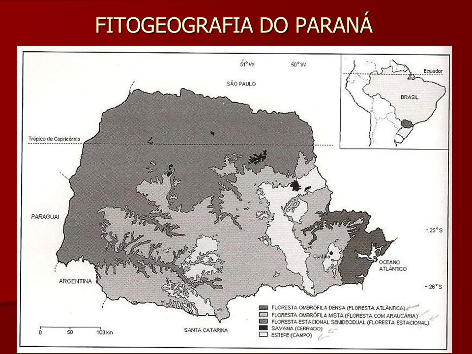 FITOGEOGRAFIA DO PARANÁ