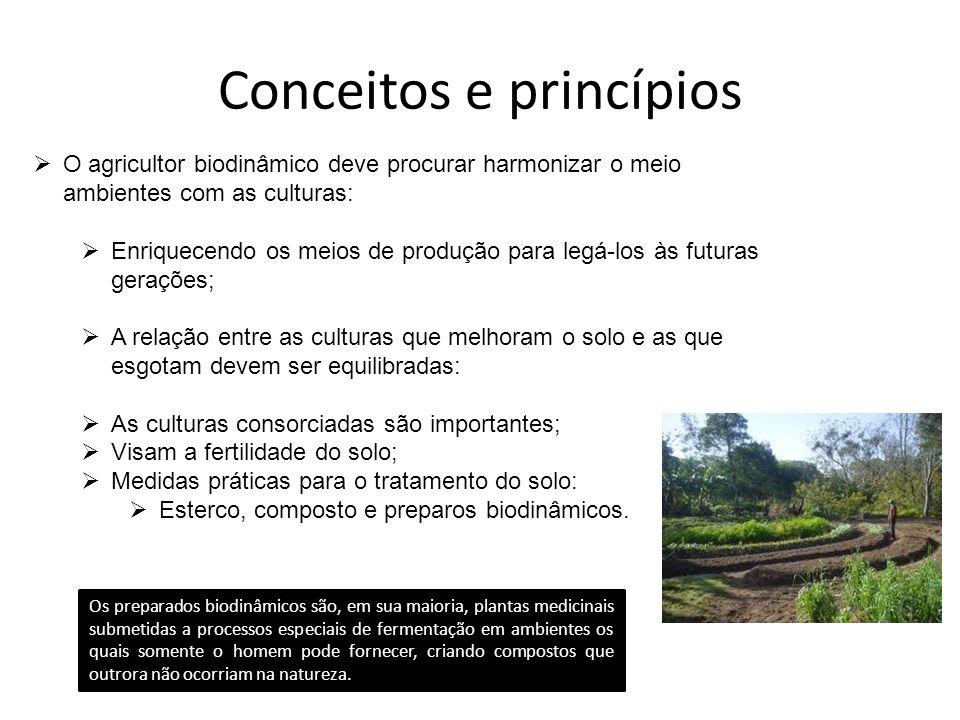 Conceitos e princípios
