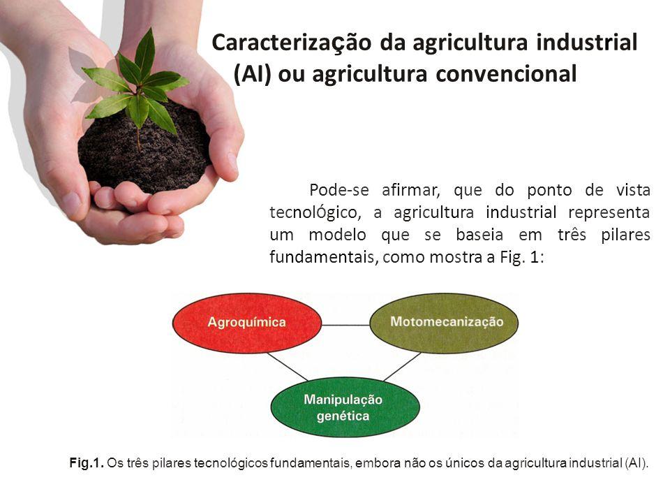 Caracterização da agricultura industrial (AI) ou agricultura convencional